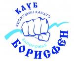 """Клуб Киокушин каратэ """"Борисфен"""""""